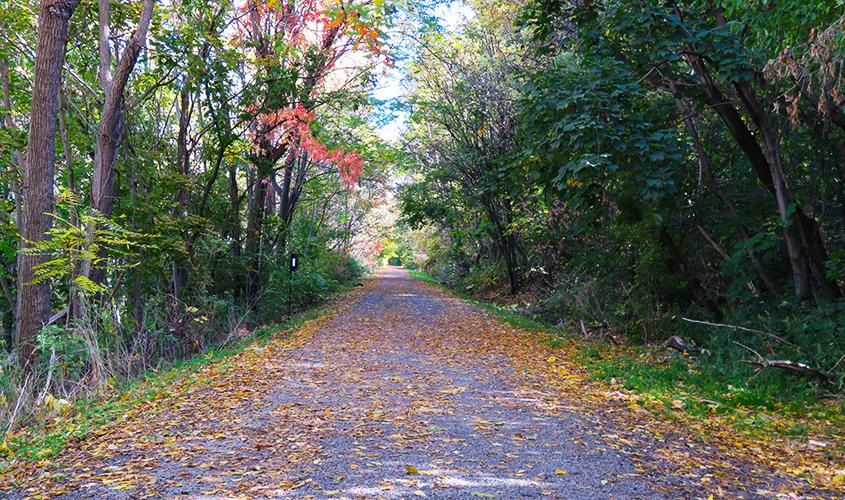 w-rail-trail