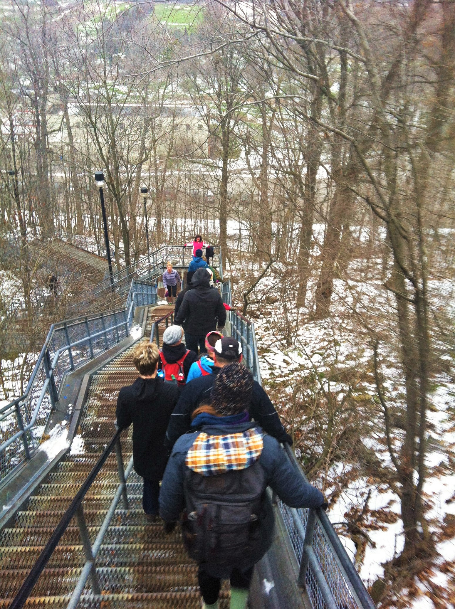 Chedoke Stairs Jan 2016