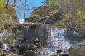 Glovers falls with flow